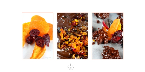 Chocolat & Fruit Fusion  © Liz Collet