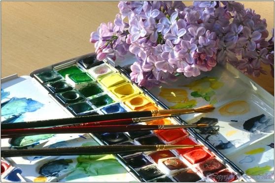 Die Farben meines Flieders © Liz Collet