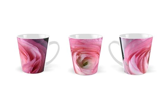 Pink Ranunculus © Liz Collet