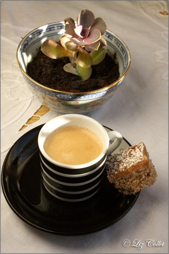 Echeverie mit Espresso und Nusskuchen © Liz Collet